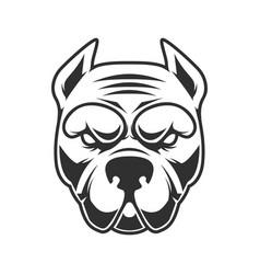 Funny pitbull terrier head design element vector