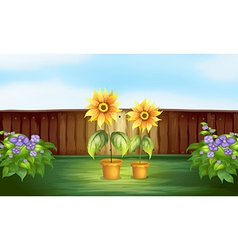 Plants inside a fence vector
