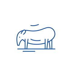 tapir line icon concept tapir flat symbol vector image