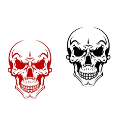 Human skull for horror or halloween vector image