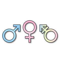3 gender signs vector