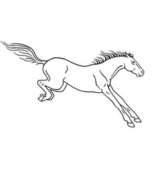 a horse landing after a jump - linear vector image