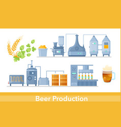 beer production process in brewery infographic vector image