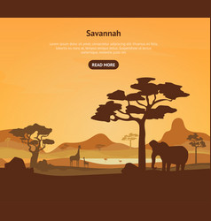 cartoon african savannah card poster and text vector image