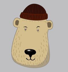 cute honey bear with scarf vector image