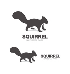 Gray squirrel logo vector image