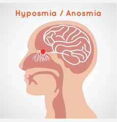 Hyposmia and anosmia logo icon design vector
