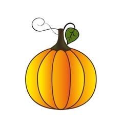 Pumpkin fruit icon image vector