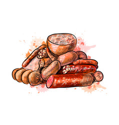 sausages from a splash of watercolor vector image