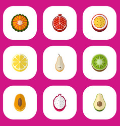 Set of 9 editable fruits flat icons includes vector