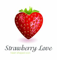 strawberry love vector image