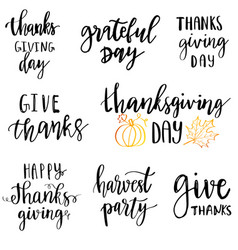 thanksgiving card design with elegant branch round vector image