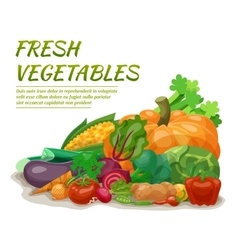Fresh Vegetables vector image vector image
