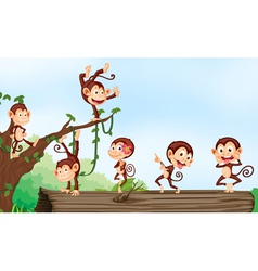 a group of monkeys vector image vector image