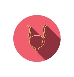 Urinary bladder icon Human body organ sign vector image