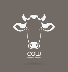 Cow head design on brown background vector