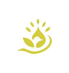 beauty bird logo vector image