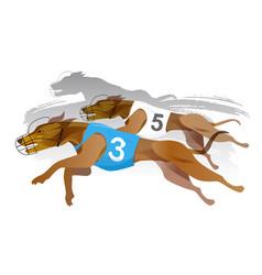 greyhound dog track racing vector image