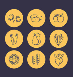 harvest line icons set organic farm food vector image