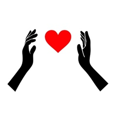 Heart in Hands Silhouette on White Background vector image
