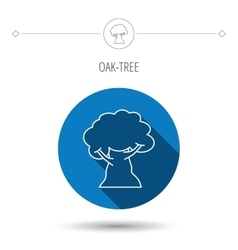Oak tree icon Forest wood sign vector image