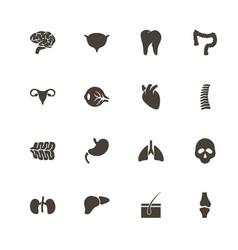 organs - flat icons vector image