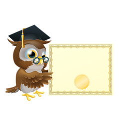 Owl diploma certificate background vector