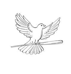 Pigeon or dove flying with cane drawing vector