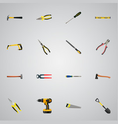 Realistic carpenter hatchet tongs and other vector