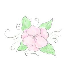 Decorative flower sketch vector image vector image