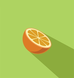 Orange Fruit Flat Design vector image