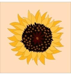 Sunflower icon - vector image