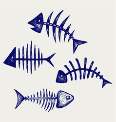 Fish bone vector image
