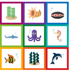 flat icon nature set of playful fish seashell vector image