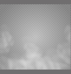 Fog or smoke isolated transparent special effect vector