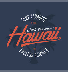 hawaii surf typography vector image