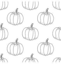 Pumpkin pattern contour graphic on white vector