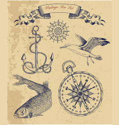 Vintage sea set with fish gull and anchor vector