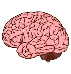 Human brain cartoon vector