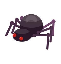 Spider icon isometric style vector