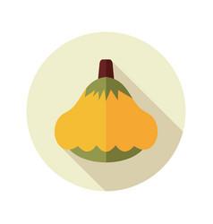 pattypan squash flat icon vegetable vector image vector image