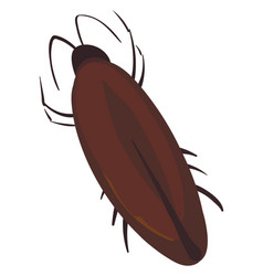 cockroach bug on white background vector image