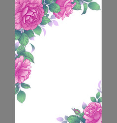 elegant background with rose flowers vector image
