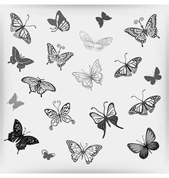 Grey butterfly logo set vector image