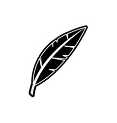 Isolated feather design vector