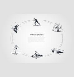 winter sports - snowboard skating skiing figure vector image