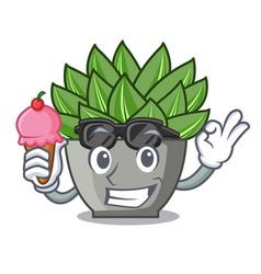 With ice cream view of green echeveria cactus vector