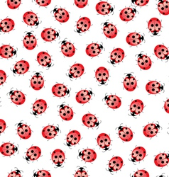seamless ladybug pattern vector image vector image