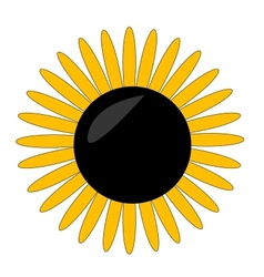 yellow flower symbol on the white vector image