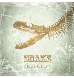 Snake Skeleton vector image